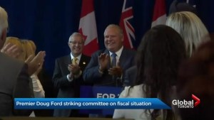 Premier Ford announces committee to investigate Liberals' finances